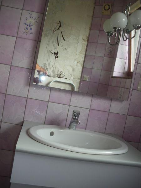 Achetez meuble de salle de occasion annonce vente eckbolsheim 67 wb15026 - Recherche meuble de salle de bain d occasion ...