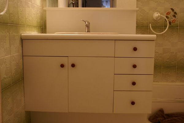Achetez meubles de salle de occasion annonce vente blois 41 wb149673772 for Meuble salle de bain occasion belgique