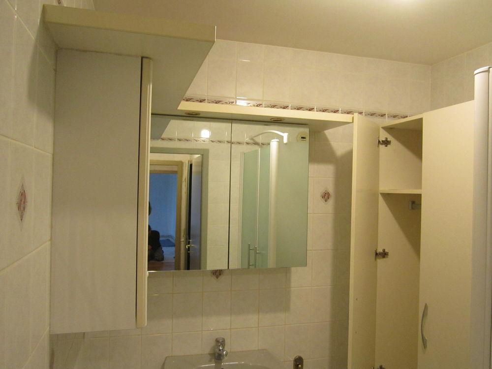 Achetez meubles de salle de occasion annonce vente metz for Vendeur de salle de bain
