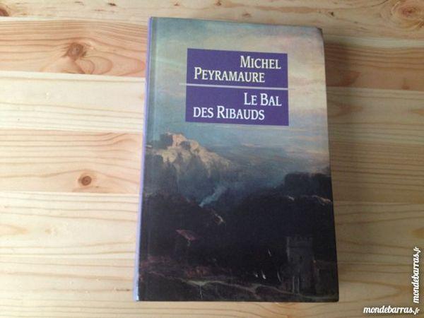Michel Peyamaure - Le bal des Ribauds 10 Dijon (21)