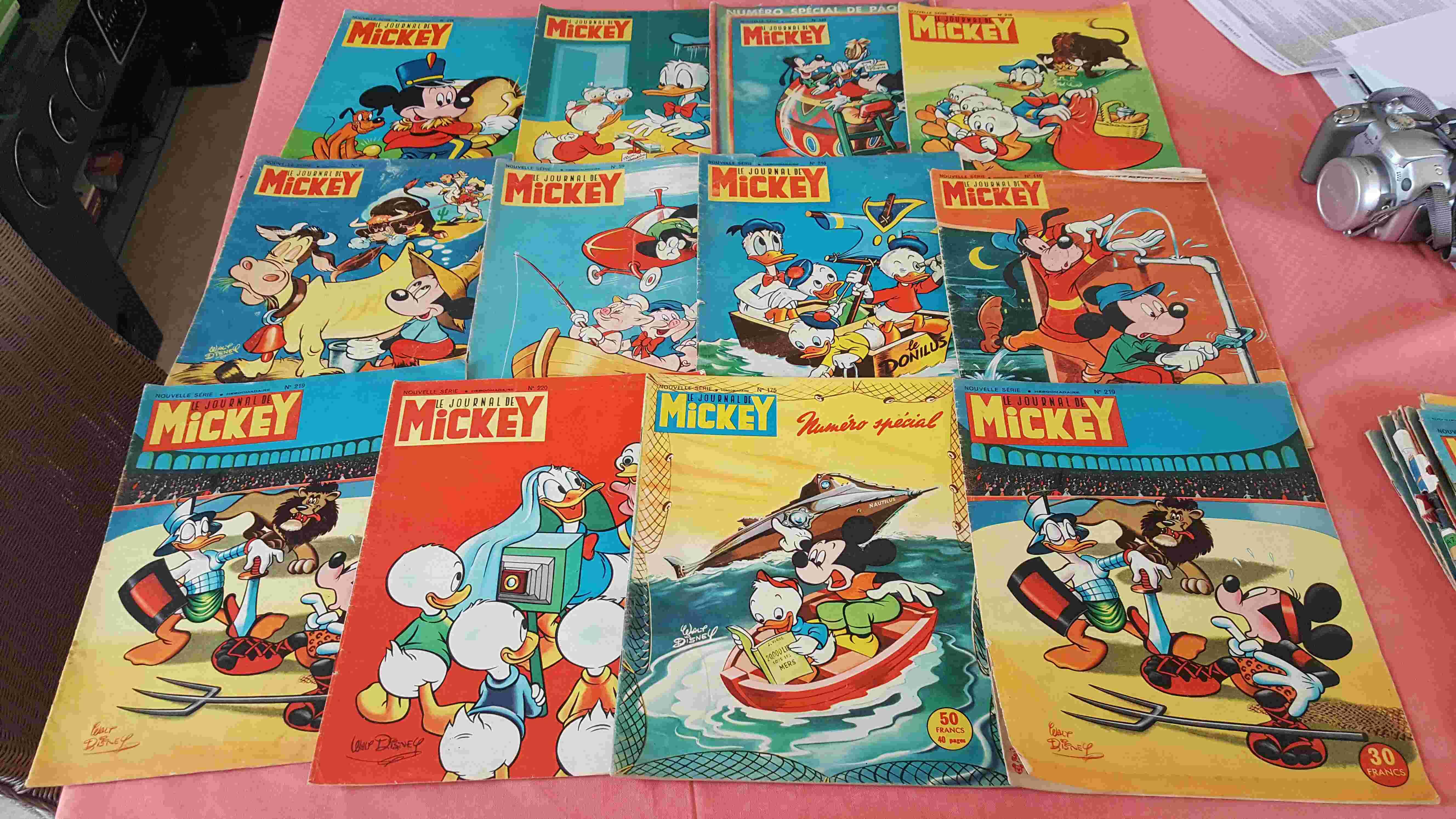 mickey et spirou 0 Saint-Martin-des-Entrées (14)