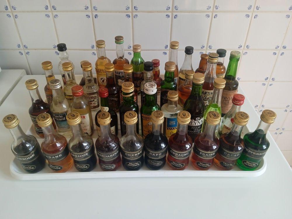 125 Mignonnettes alcool 60 La Brède (33)