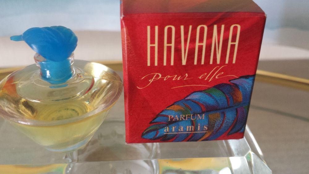 MINIATURE  HAVANA  10 Nice (06)