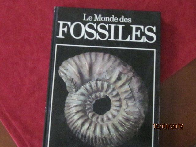 Le monde des fossiles 10 Amboise (37)