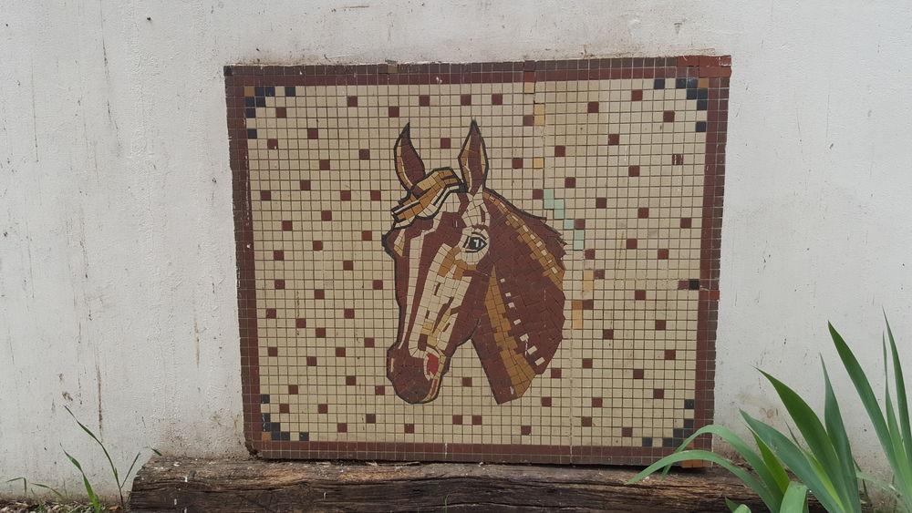 Mosaïque tête de cheval 0 Argenteuil (95)