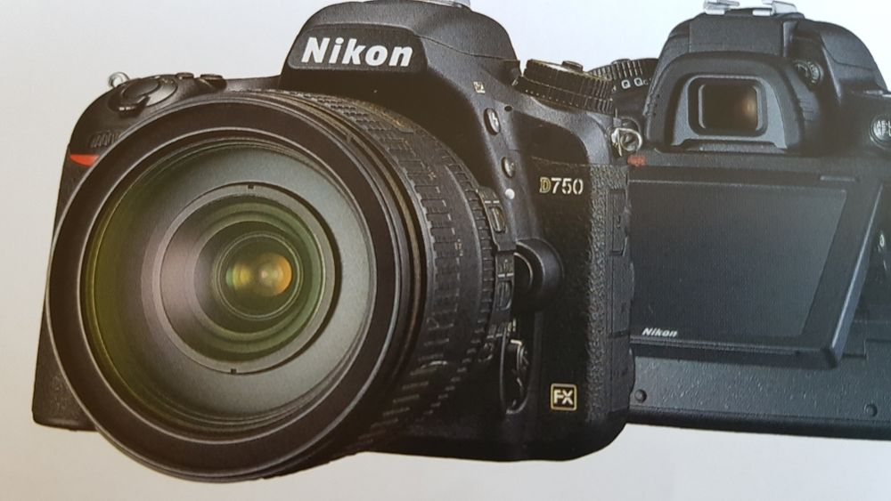 NIKON D750 0 Bordeaux (33)
