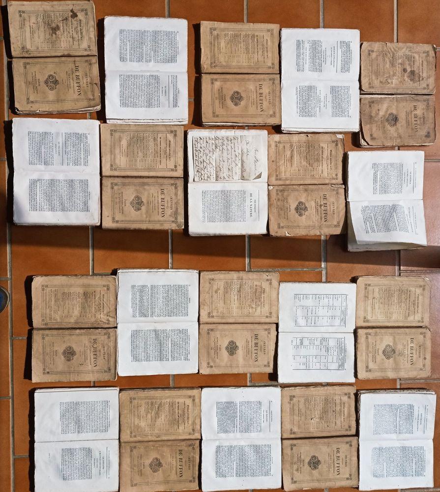 OEUVRES COMPLÈTES DE BUFFON en 20 volumes brochés -1833-1834- Livres et BD
