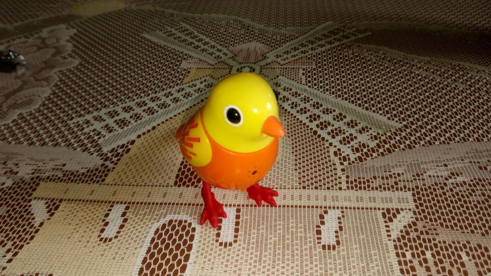 oiseaux digibird ou digipingouin ou digiperruche Jeux / jouets