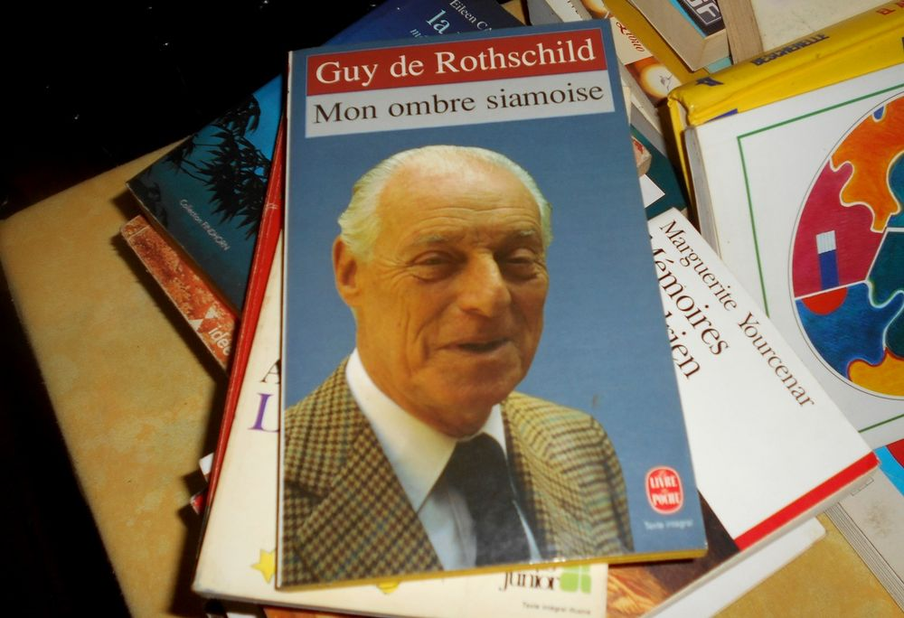 Mon ombre siamoise Guy de Rothschild 4 Monflanquin (47)