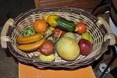 Panières à fruits 5 Perreuil (71)