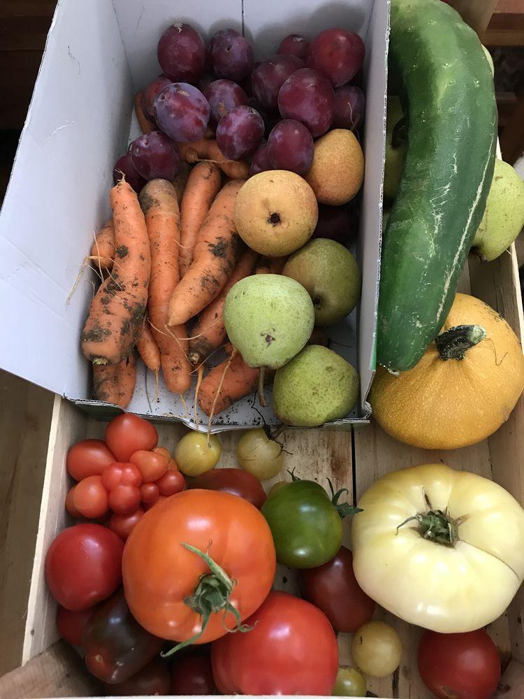 paniers de fruits et légumes BIO permaculture. 15 Paris 1 (75)