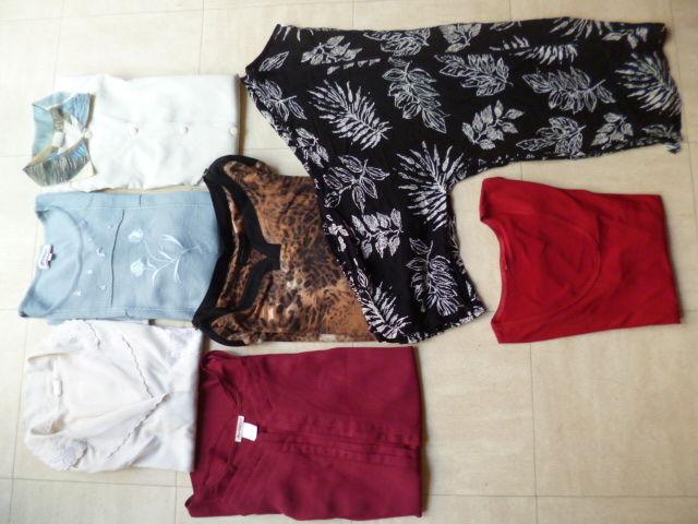 lot de pantalons et hauts - 46 au 50 - zoe 2 Martigues (13)