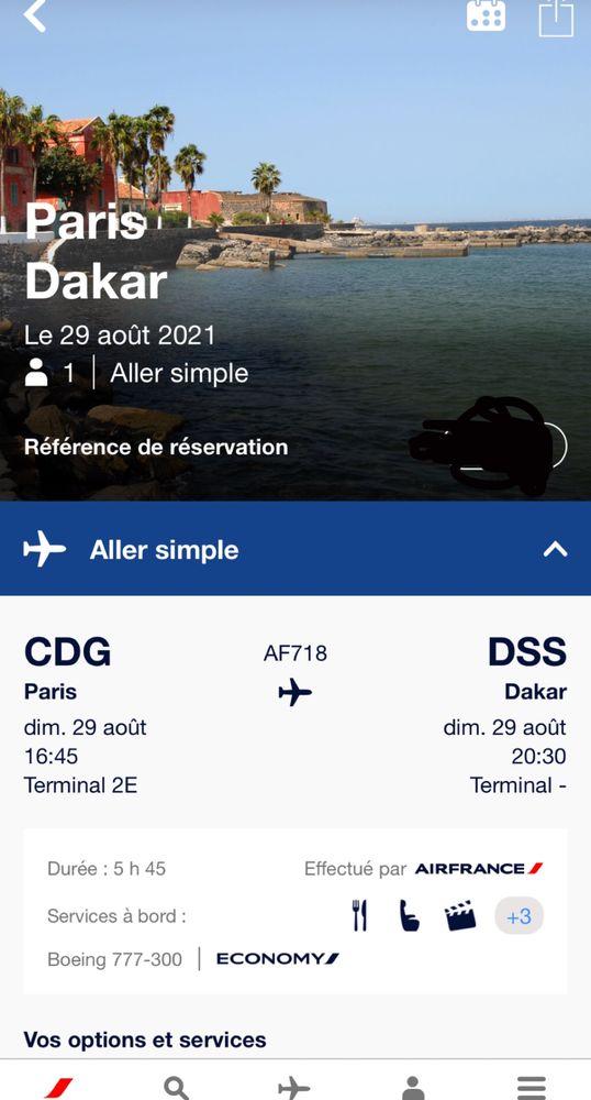 vol paris - Dakar Air France 300 Brest (29)