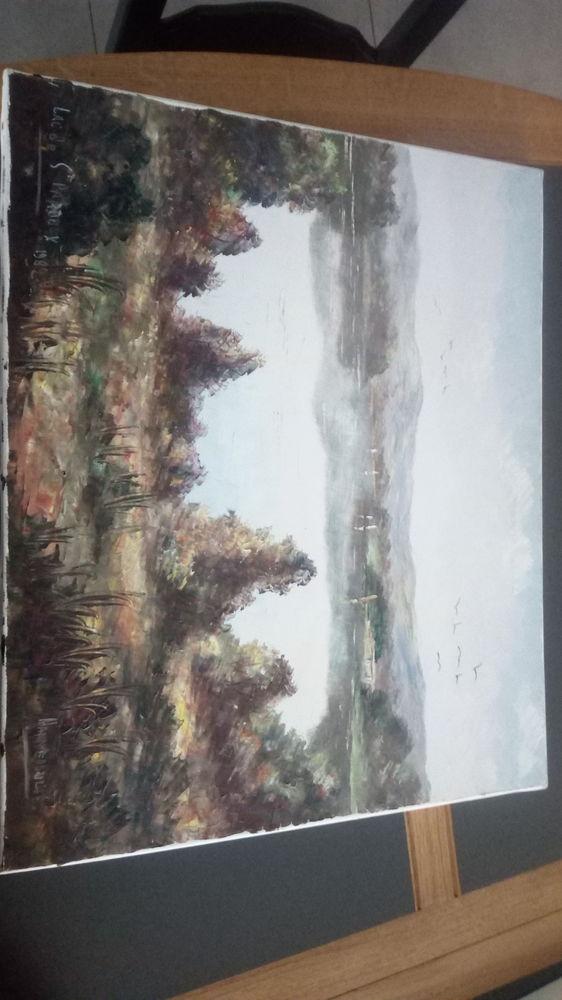 Peinture sur toile  de Hannedouche 0 Avranches (50)