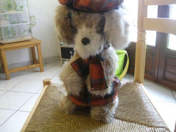 peluche chien 3 Montoir-de-Bretagne (44)
