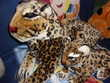 Peluche guépard adulte et son bébé, neufs Jeux / jouets