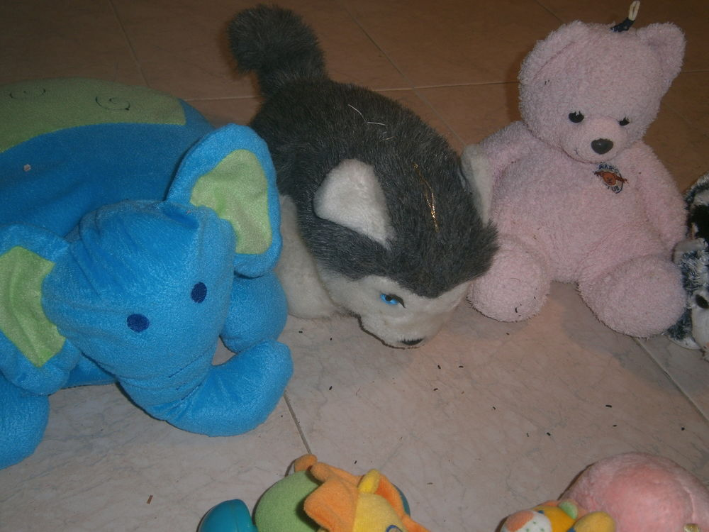 peluches 13 Annonay (07)