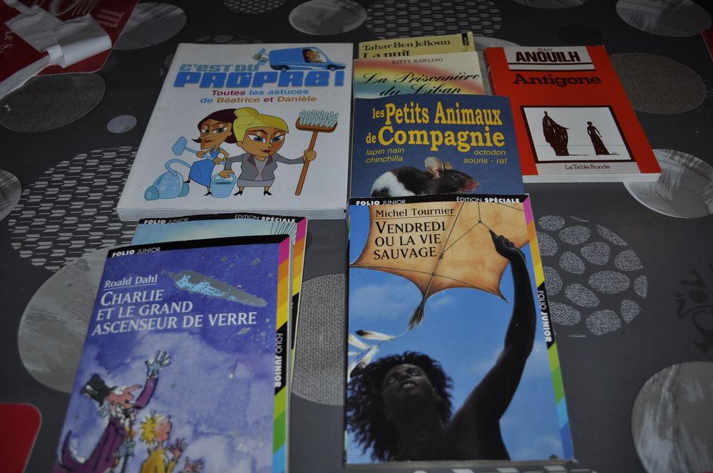 Lot de 8 petits livres 5 Perreuil (71)