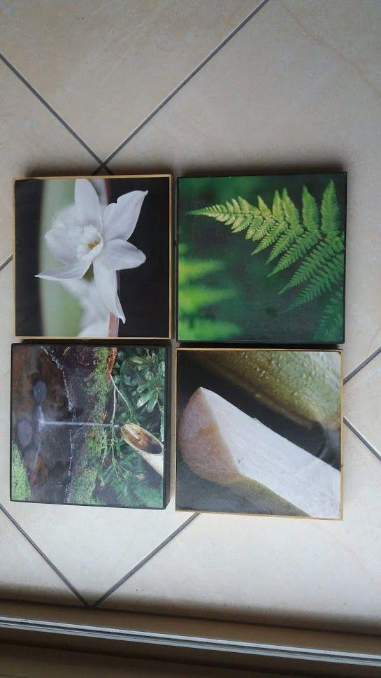 petits tableaux sur le thème nature & Zen 2€ chaque 2 Jouarre (77)