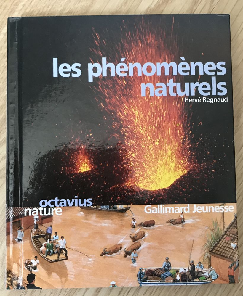 Les Phénomènes naturels d'Hervé Regnaud 4 Saâcy-sur-Marne (77)