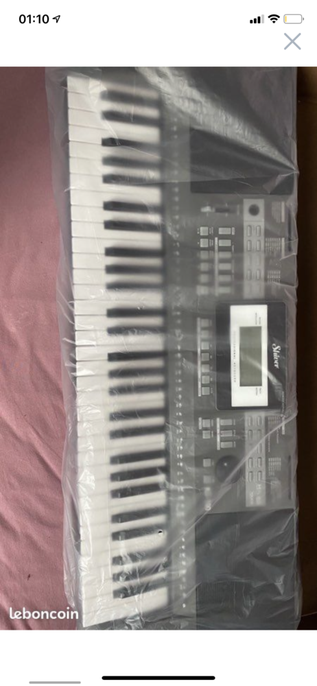Piano Arrangeur Shiver KS100 Instruments de musique