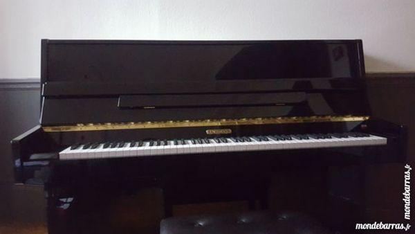 Piano Bachmann 2300 Dijon (21)
