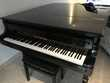 Piano demie queue wilh steinberg Instruments de musique