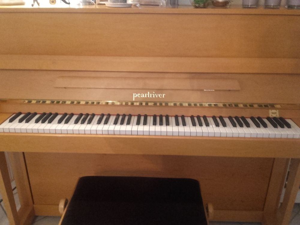 PIANO DROIT PEARL RIVER 117M 1800 Décines-Charpieu (69)