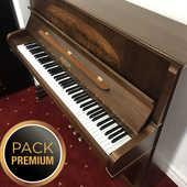 Piano droit PLEYEL-SCHIMMEL modèle MATIGNON 122 en PACK PREMIUM 7490 Levallois-Perret (92)