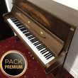 Piano droit PLEYEL-SCHIMMEL modèle MATIGNON 122 en PACK PREMIUM Levallois-Perret (92)