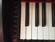 Piano Numérique Kurweil Mark-Pro ONEi F 88 notes Instruments de musique