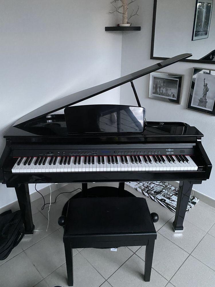 Piano numérique à queue 990 Devecey (25)