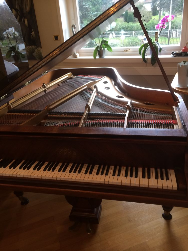 piano quart de queue 3200 Ouches (42)