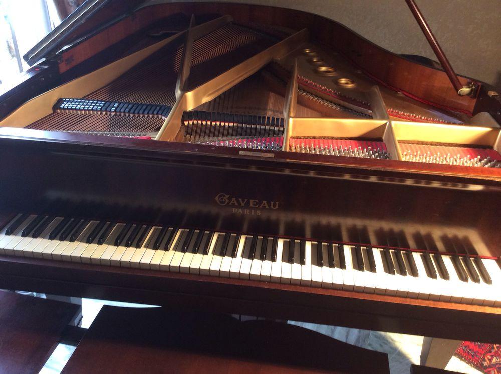 piano  1/2 queue   204cm  5000 Villedubert (11)