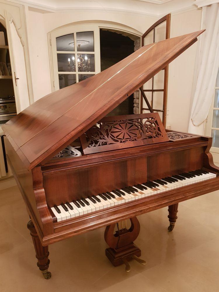 Piano a queue cadre métallique  1000 Breuillet (17)