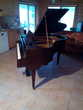 piano à queue crapaud Instruments de musique