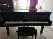 Piano à queue  4000 Nomexy (88)