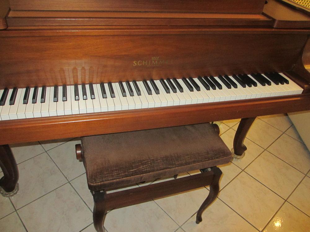 piano 1/4 queue  7300 Saint-Claude (97)