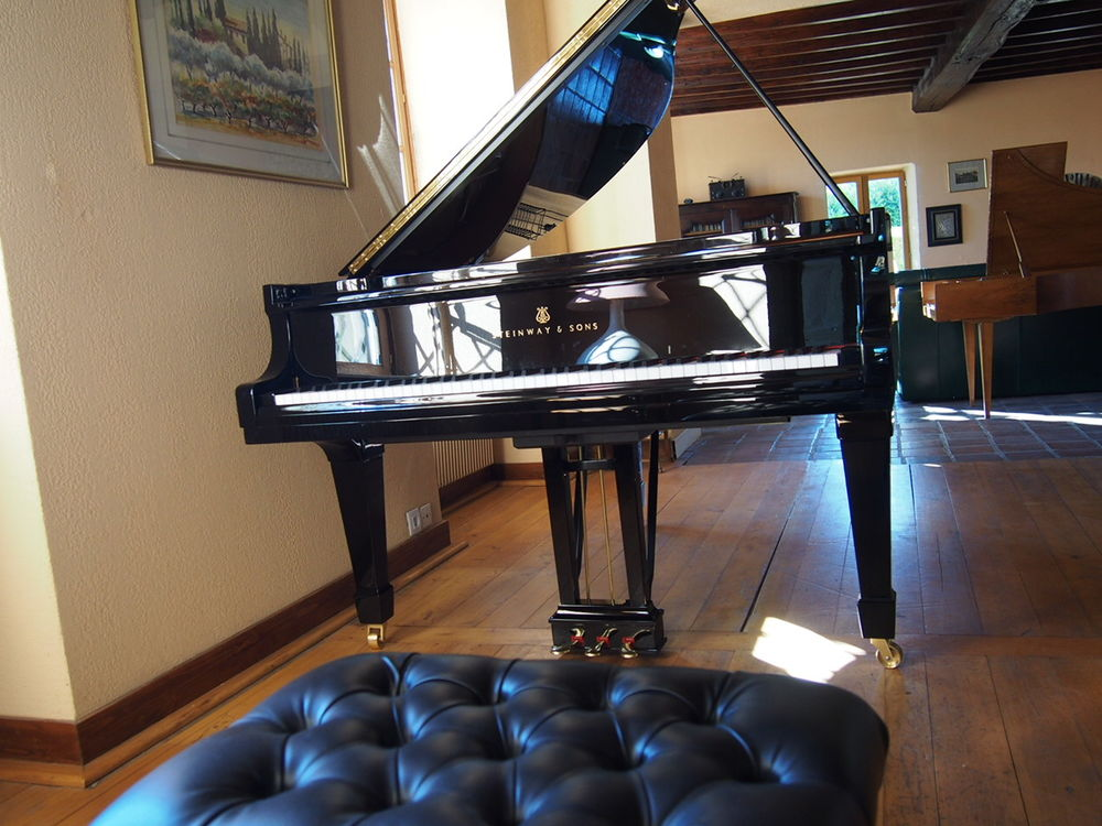 Piano Steinway & Sons 34690 Lyon 4 (69)