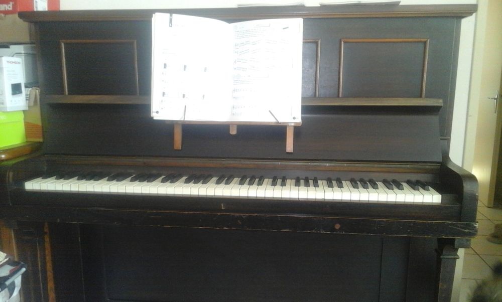 piano 350 La Plaine (49)