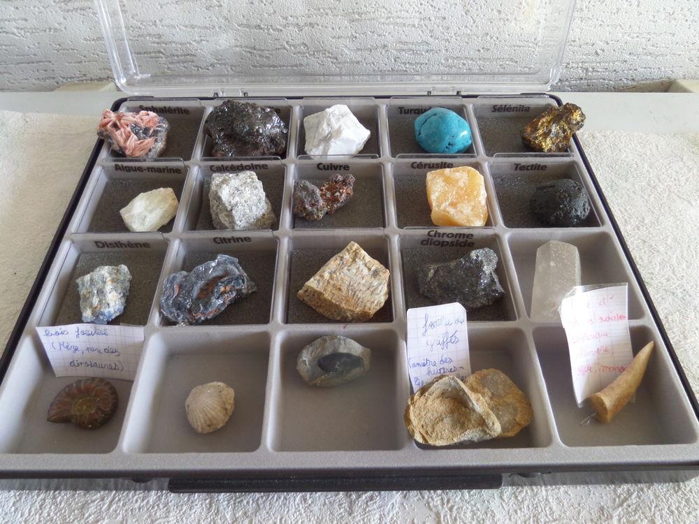 pierres et mineraux du monde entier 80 Lyon 8 (69)