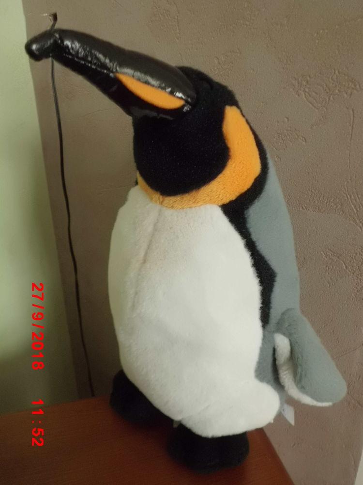 PINGOUIN MARINELAND 17 Oignies (62)