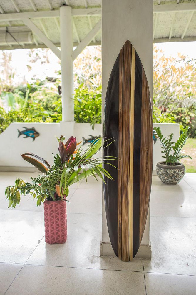 Achetez planche de surf de neuf revente cadeau annonce vente sainte foy - Planche de surf de decoration ...