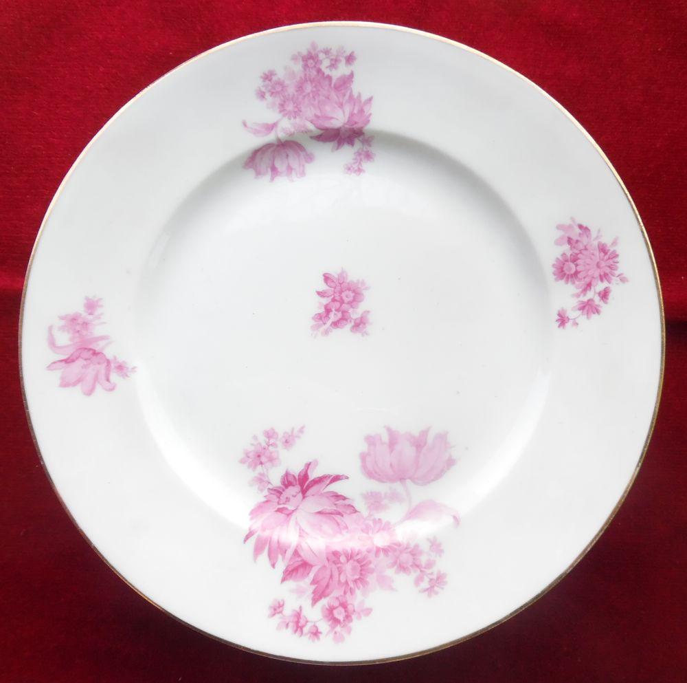6 Plats divers en porcelaine de Limoges blancs décors fleurs 50 Castries (34)