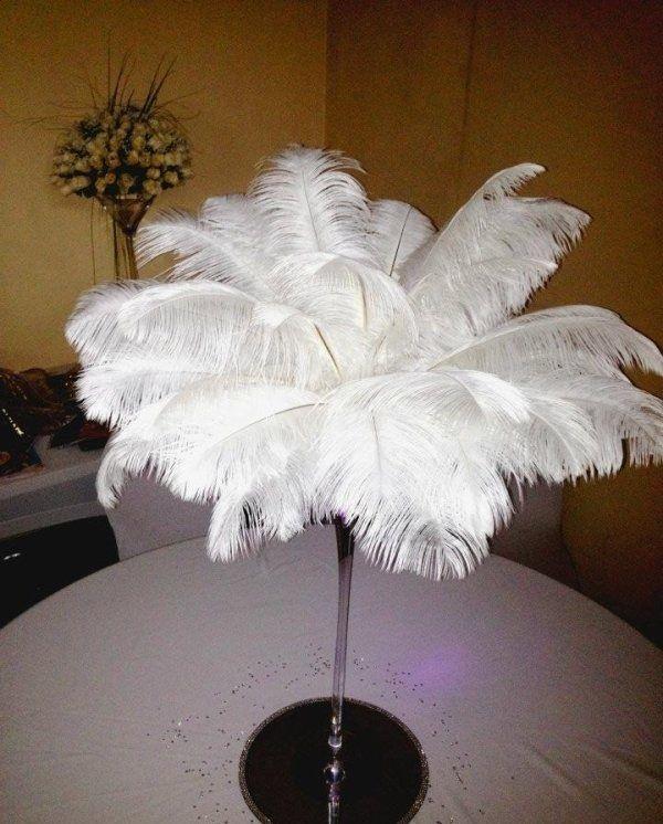 Plumes autruches blanches 50/60 cm  Décoration