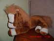 poney marron et blanc cp