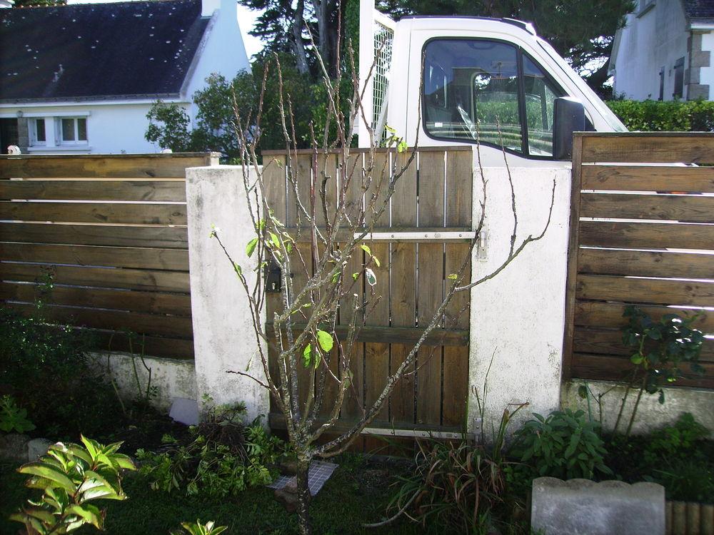 portail et portillon BOIS 0 Saint-Pierre-Quiberon (56)