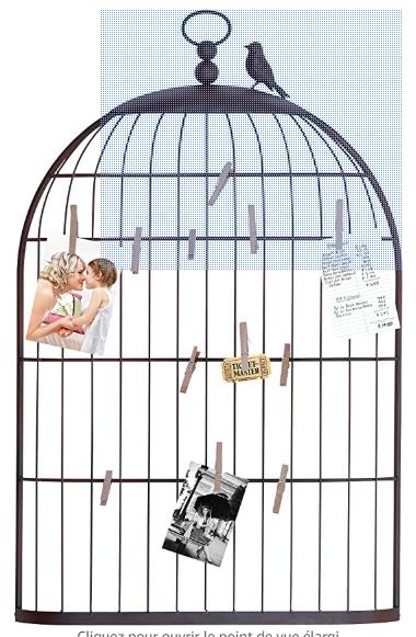 Porte PHOTOS cage à oiseaux 5 Léguevin (31)