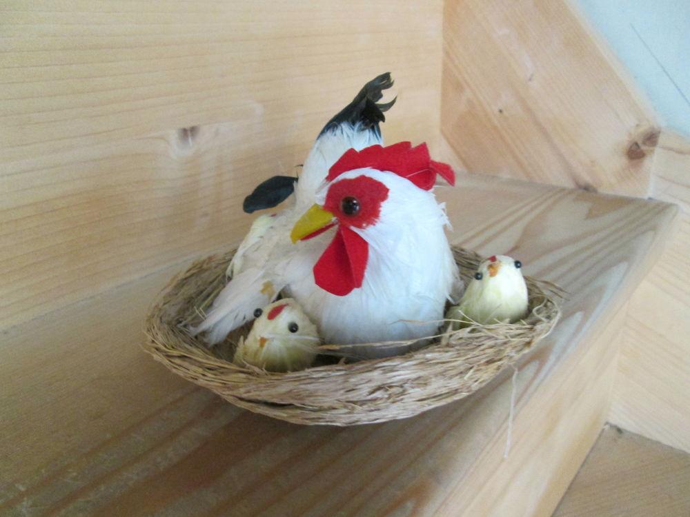 Poule  Vintage   en plumes avec poussins  8 Goussainville (95)