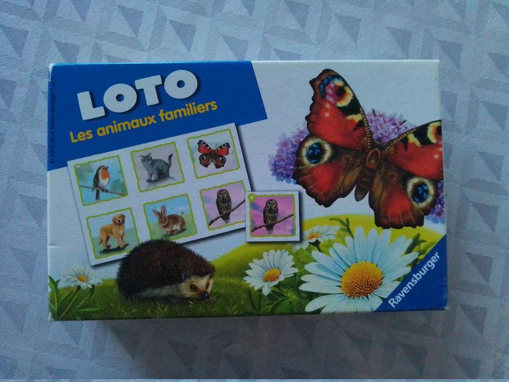 Jeu pour enfants Loto Les animaux familiers 3 Aurillac (15)